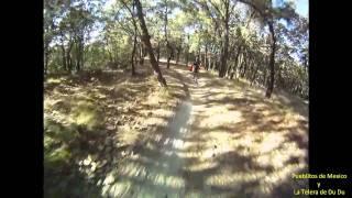El bosque de la Primavera , toboganes , downhill , Jalisco , Mexico.
