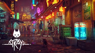 STRAY | Teaser Trailer