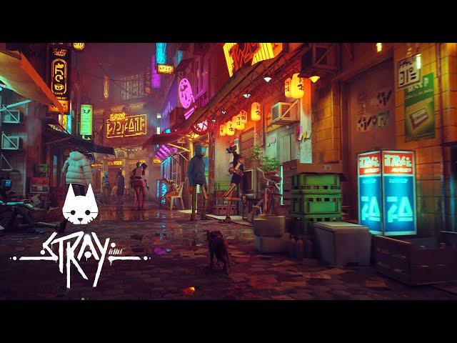 Stray (видео)