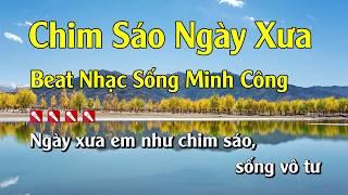 Karaoke Chim Sáo Ngày Xưa Hay Nhất - Tone Nam