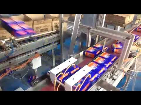 Robotic Case Packer for Soap - Modtech Machines