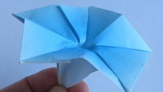 Origami Morning Glory