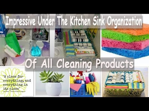 Impressive Under The Kitchen Sink Organization Of All Cleaning Products (Kitchen Organization Ideas)