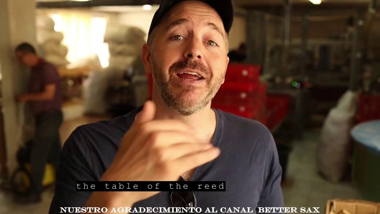 cañas rigotti,  better sax visita la fábrica y plantación de Rigotti