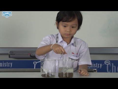 กิจกรรม ในดินมีอะไรบ้างตอนที่ 4 วิทยาศาสตร์ ป.1