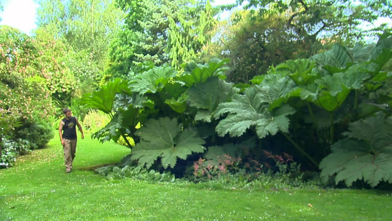 Jardin De Normandie Le Clos Du Coudray Youtube
