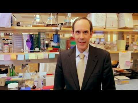 American Cancer Society Legends: Dr. Brian Druker