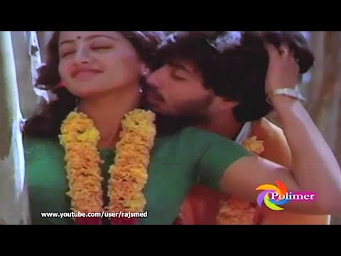 Tamil Song - Enakkaaga Kaathiru - Oh Maaya..Ooty Malai Kaattile Pottu Vaitha Rottile