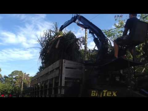 2009 Big Tex Dump Trailer with Grapple - YouTube