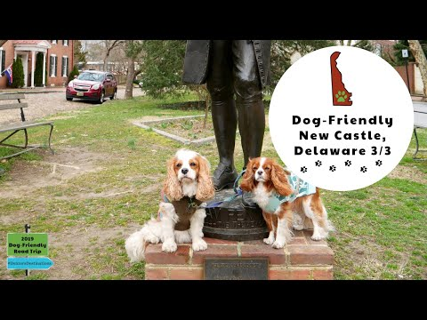 Dog-Friendly Road Trip To Historic New Castle, Delaware. Dexter The Dog's 2019 US Road Trip Vlog #16