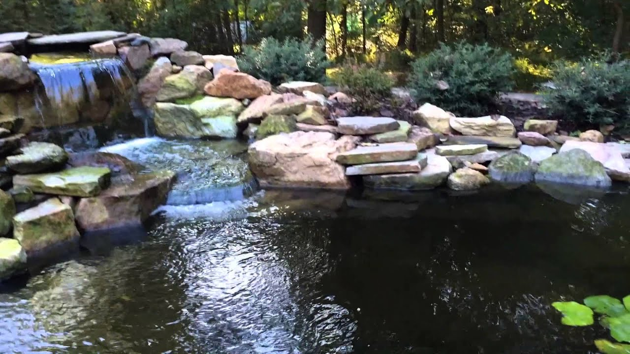Koi pond leaks repair pond filter installation pond for Fish pond repair