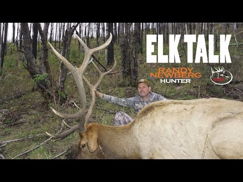 (DIY Hunting) ELK TALK - NEW MEXICO ELK TAG DRAWING