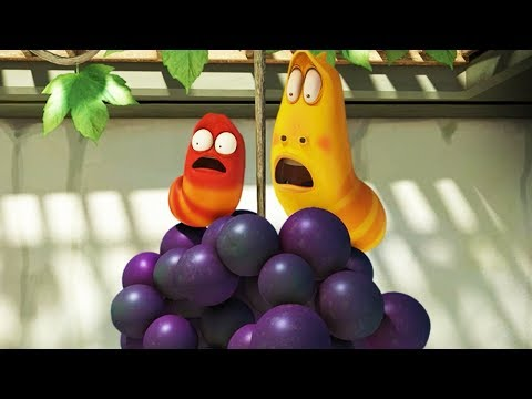 LARVA - GRAPE | 2017 Cartoon | Cartoons For Children | Kids TV Shows Full Episodes
