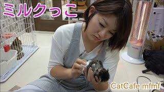 ミルクっこのお世話をしている オーナー多田あさみさん。 良きママ! 撮...