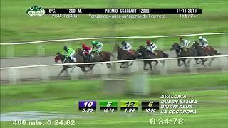 Vidéo de la course PMU PREMIO SCARLATT 2009