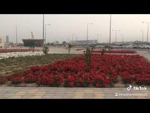 Qatar Post Signal