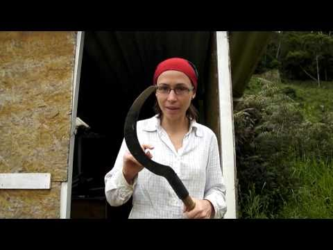 Farmstay in Brazil - Milena from Czech explaining her first week