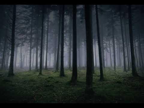 Helvegen - Wardruna  (English Cover By Daemon Nykthe)