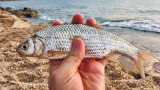 Летняя рыбалка на Каспийском море Дагестан 2020