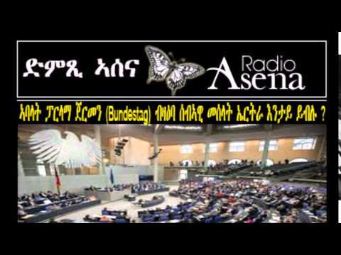 Voice of Assenna: German Parliament's Discussion on Eritrea's Human Rights Situation