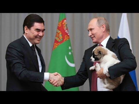 Dog lover Putin given premium-breed puppy as gift by Turkmen president