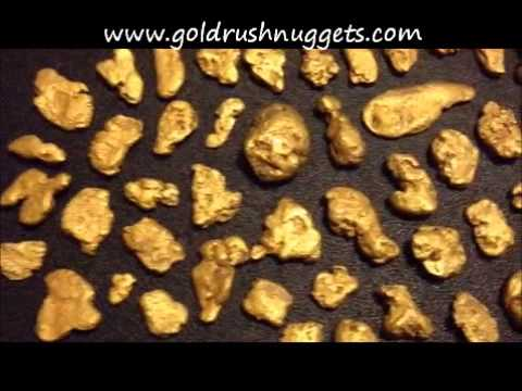 Gold Nuggets from the Yukon Territory, Canada