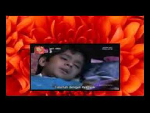 Lagu Tidur Ranveer Untuk veera (Veera Song)