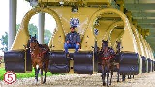 Mesin ini Mampu Menyulap kuda balap jadi Seperti ini....