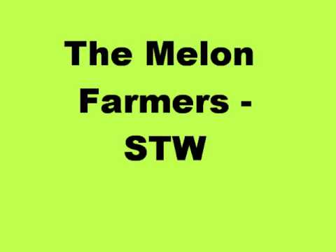 The Melon Farmers - STW (live)