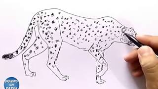 """Very Easy!! How to Drawing """"Cheetah"""" Cartoon for kids - Drawing doodle art"""