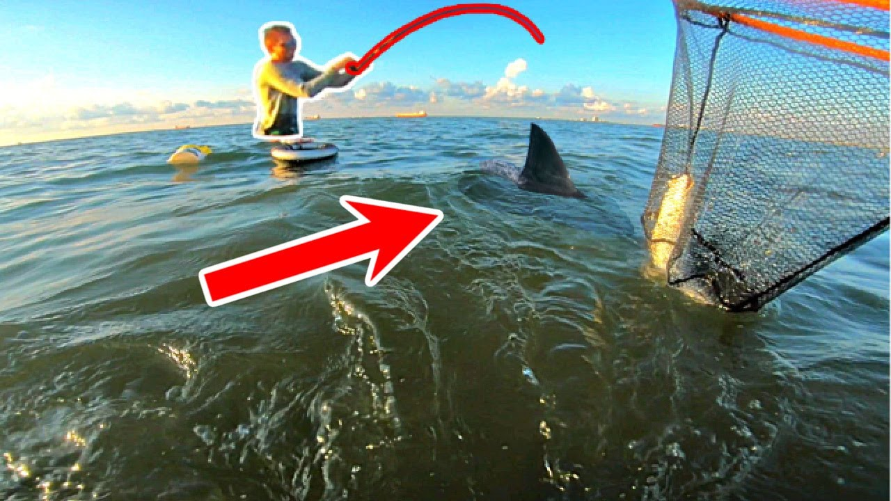 TERRIFYING Moment Wade Fishing Shark Infested Waters!! (Never Again)