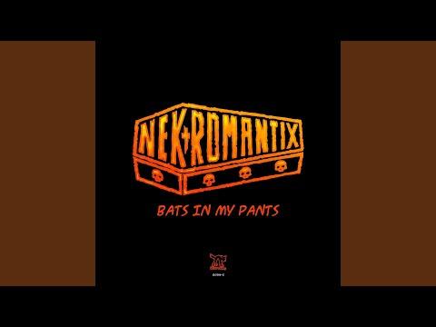 Bats In My Pants mp3