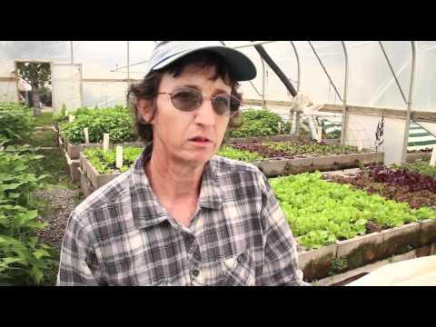 Living Farm Paonia Film Fest Final.mov