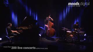 Morning Smile Live at the Moods by Rémi Panossian trio / RP3
