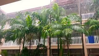 Тропический дождик. Тайланд. Пхукет. (Woraburi Phuket Resort.)