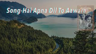 Hai Apna Dil To Awara Instrumental With Lyrics