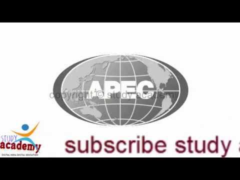 Asia Pacific Economic Cooperation   APEC   What is the APEC   President Putin