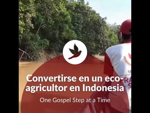 Convertirse en un eco-agricultor en Indonesia || El evangelio, paso a paso 🕊️
