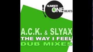 A.C.K. & SLYAX - The Way I Feel (Instrumental Mix)