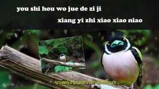 wo shi yi zhi xiao xiao niao