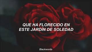 The Truth Untold (전하지 못한 진심) (feat. Steve Aoki) — BTS; Español.