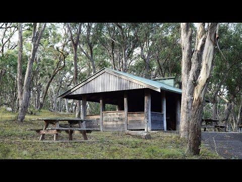 Dangar Falls NSW Australia | Travel and Holiday Guide