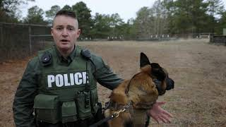 K-9 now on duty at Cape Henlopen State Park