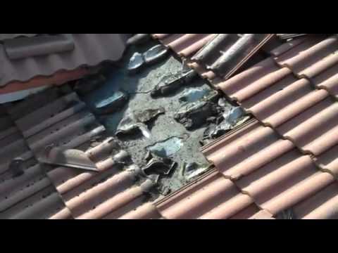 Invasione di pipistrelli sotto il tetto di casa centinaia - Alzare il tetto di casa ...