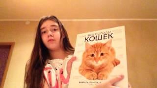 """Обзор на мою любимую книгу""""Все породы кошек"""""""