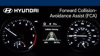 Forward Collision-Avoidance Assist Explained   Elantra   Hyundai