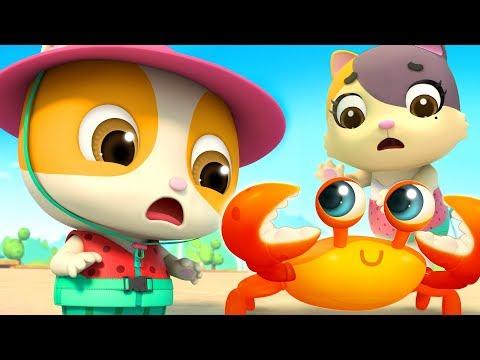 Beach Song  Baby Shark Bath Song  Nursery Rhymes  Kids Songs  BabyBus