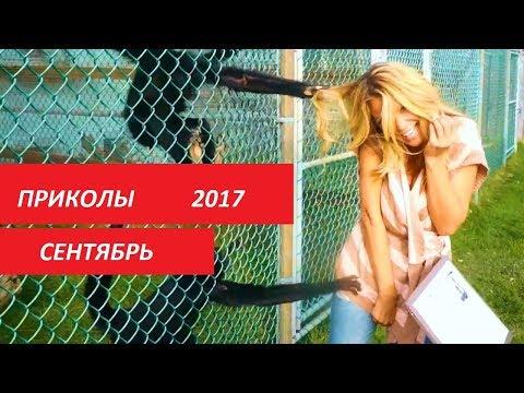 ЛУЧШИЕ ПРИКОЛЫ 2017,
