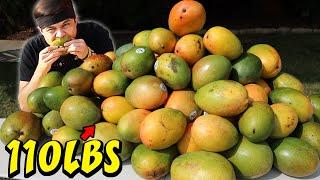 100+lbs Wumpa Fruit Eat-Off! (ft. Crash Bandicoot)