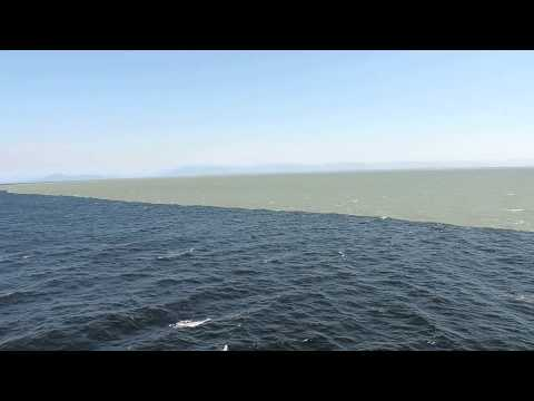 Two oceans meet but don't mix': What does this viral video really show?